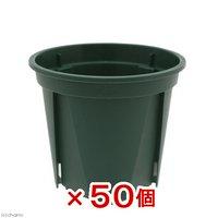 スリット鉢 EUPOT 6cm モスグリーン 50個入り
