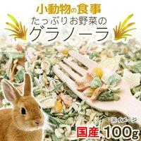 小動物の食事 たっぷりお野菜のグラノーラ 100g おやつ 無添加 無着色