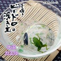 浮き玉 大玉 カエル