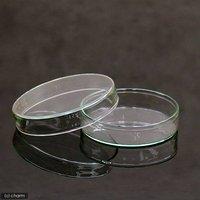 ガラス製 フラットシャーレ 91mm 昆虫 標本用品
