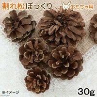 長野県産 割れ松ぼっくり 30g 小動物のおもちゃ パインコーン 国産 無添加 無着色
