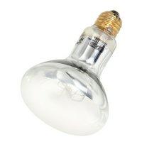 GEX エキゾテラ ソーラーグローUV 80W PT2334