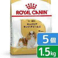 ロイヤルカナン キャバリア キング チャールズ 成犬高齢犬用 1.5kg×5袋  ジップ付