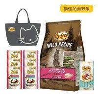 抽選企画対象 食器おまけ付 ワイルド レシピ エイジングケア チキン シニア猫 2kg + パウチ 6袋 + おやつ 1袋