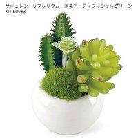 サキュレントリフレリウム 消臭アーティフィシャルグリーン KH-60983