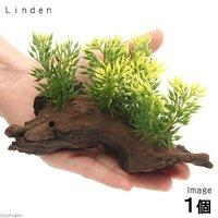 アーティフィシャルプランツ(人工水草)流木付 Linden(1個)