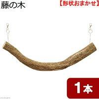 天然素材 吊り下げ式 藤の木 スパイラル 太枝 (長さ550~600mm 直径46mm以上)