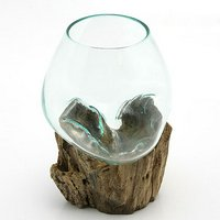 一点物 ラウンドガラス ノーマルS 流木スタンド付(861295)コケ テラリウム ガラス インテリア 瓶