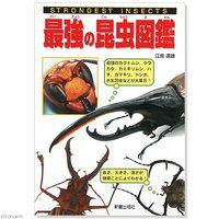 STORONGEST INSECTS 最強の昆虫図鑑