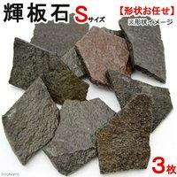 形状お任せ 輝板石 Sサイズ 3枚 国産品