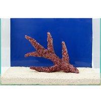 一点物 Real Reef Rock Branch(リアルリーフロックブランチ)(LLサイズ) RR-049(1個)