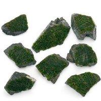 巻きたて 南米ウィローモス 風山石 ミニサイズ(約5cm)(無農薬)(1個)