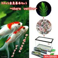 コメット 金魚飼育セット charm version 60cm水槽 説明書付