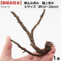 形状お任せ 煮込み済み 極上流木 Sサイズ(約10~20cm)1本
