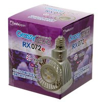 ボルクスジャパン Grassy LeDio RX072e Violet