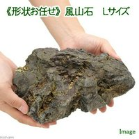 形状お任せ 風山石 Lサイズ(約20~25cm) 1個