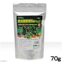 ビバリア 爬虫類野菜6種ブレンド 70g 爬虫類 餌
