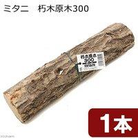 ミタニ 朽木原木300