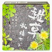 聖新陶芸 雑草栽培セット