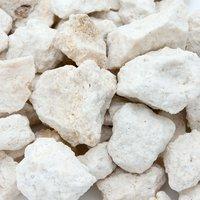 国内洗浄済み C.P.Farm fossil coral 化石サンゴメディア Lサイズ 1kg カルシウムリアクター用