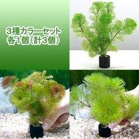 メダカ金魚藻 マルチリングブラック(黒) カボンバ 3種カラーセット 各1個(計3個)