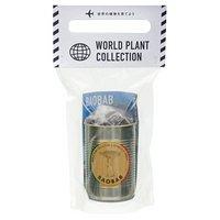 WORLD PLANT COLLECTION バオバブ