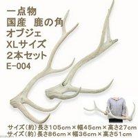 一点物 国産 鹿の角 オブジェ XLサイズ 2本 E-004 ・