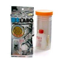 フジコン 標本LABO かんたん昆虫標本セット(1~2匹用) 昆虫 標本用品 標本セット