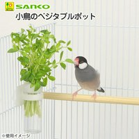 三晃商会 SANKO 小鳥のベジタブルポット 小鳥 菜さし野菜入れ
