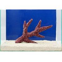 一点物 Real Reef Rock Branch(リアルリーフロックブランチ)(LLサイズ) RR-055(1個)