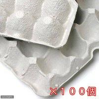紙製卵トレー 45×29cm 100枚セット 昆虫 コオロギ 飼育 ハウス ケース