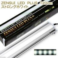 ZENSUI LED PLUS 120cm ストロングホワイト 水槽用照明 ライト 熱帯魚 水草