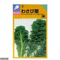 野菜の種 わさび菜の種 家庭菜園