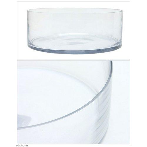 カミハタ グラスウェア シリンダータイプ L