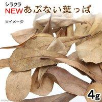 シラクラ NEWあぶない葉っぱ 1パック(4g) マジックリーフ モモタマナ エビ 飼育
