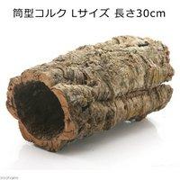 形状おまかせ  筒型コルク Lサイズ 長さ30cm 蘭 エアプランツ 着生植物 爬虫類