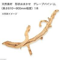 天然素材 形状おまかせ グレープバイン LL (長さ610~900mm程度) 爬虫類 小動物