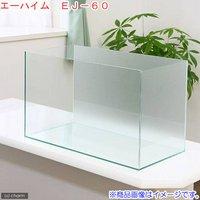 バックスクリーン貼付済 エーハイム EJ-60 60cm水槽 サンド(60×30×36cm)(単体)