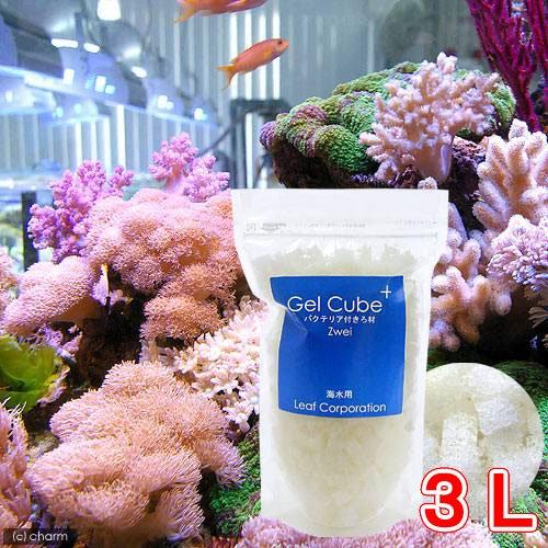 (海水魚 ろ材)海水用 Gel Cube+(ゲルキューブ・プラス) バクテリア付き スモール 3リットル