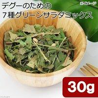 国産 デグーのための7種グリーンサラダミックス 30g お試しサイズ 副菜 桑の葉入り