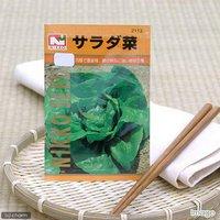 野菜の種 サラダ菜 品番:2113 家庭菜園