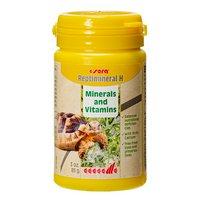 レプティミネラルH 100ml(85g) 草食性爬虫類用 ビタミン&ミネラル添加剤