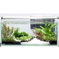 GEXグラステリア スリム600レイアウトフルセットE(用品水草のみ)水槽セット 水草ガーデン