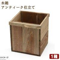 木箱 アンティーク仕立て ガーデニング DIY素材 1箱