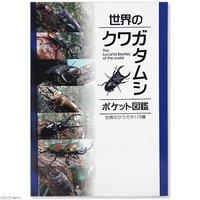 世界のクワガタムシ ポケット図鑑