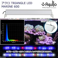 アクロ TRIANGLE LED MARINE 600 20000K Aqullo Series