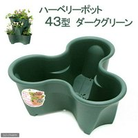リッチェル ハーベリーポット 43型 ダークグリーン 家庭菜園 いちご ストロベリーポット ハーブ 花苗