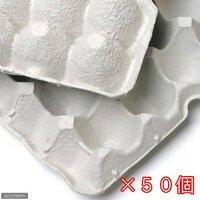 紙製卵トレー 45×29cm 50枚セット 昆虫 コオロギ 飼育 ハウス ケース