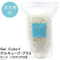 淡水用ろ過材 Gel Cube+(ゲルキューブプラス) バクテリア付き ラージ 5リットル