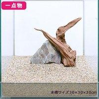 一点物 雅+風山石セット 30cm水槽用 235742